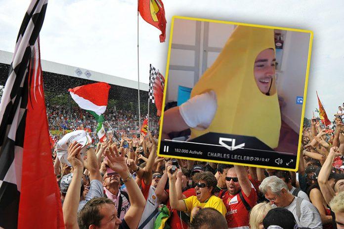 Leclerc Banane